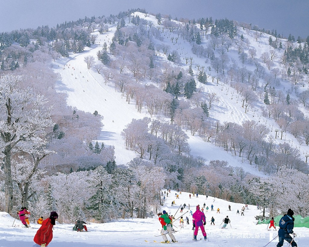 APPI Ski Resort
