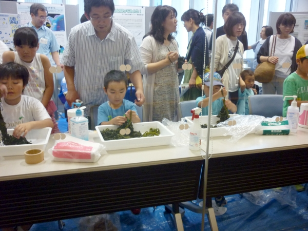 Children learning about wakame seaweed, of which Iwate is one of the top producers in the nation