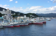 The port in Kesennuma. This special issue has a feature on the coastal city!
