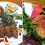 Vegetarians, Vegans, and Iwate